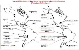 skull deformation map Americas