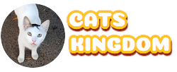 Cats Kingdom