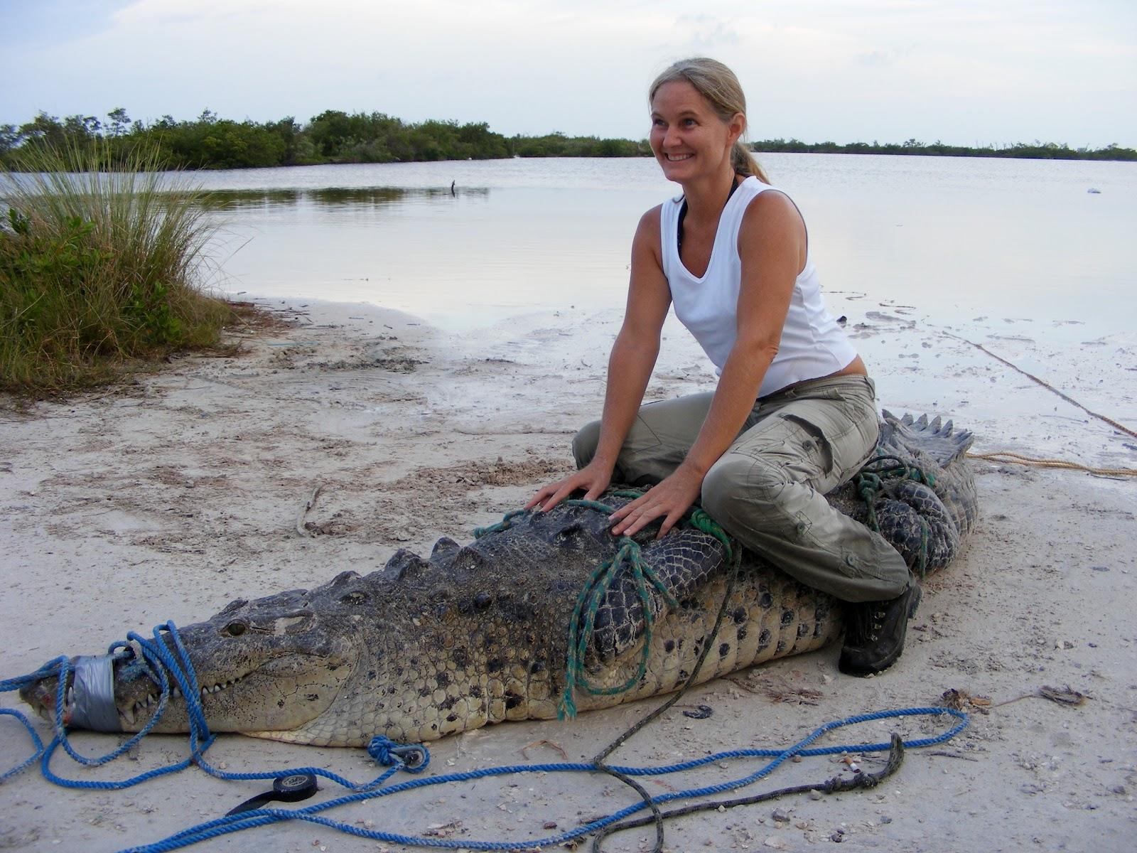 http://1.bp.blogspot.com/-RqhAd41zxhk/T6Uta7cwEWI/AAAAAAAAB_Q/71t5x04-tco/s1600/Cherie+and+croc.jpg