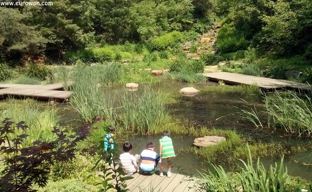 Niños jugando en estanque de la montaña Ansan