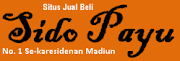 SIDO PAYU blog