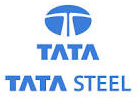 TATA Steel Limited-Governmentvacant