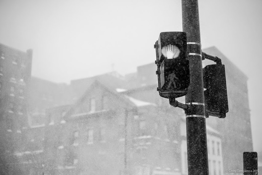 Walk sign Portland, Maine black and white winter photo from January 2015 photo by Corey Templeton