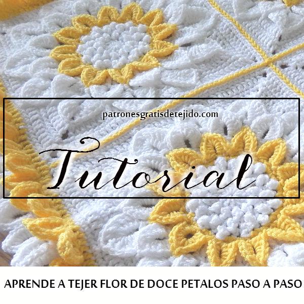 Aprende a tejer cobija para bebe de flores de 12 petalos paso a paso