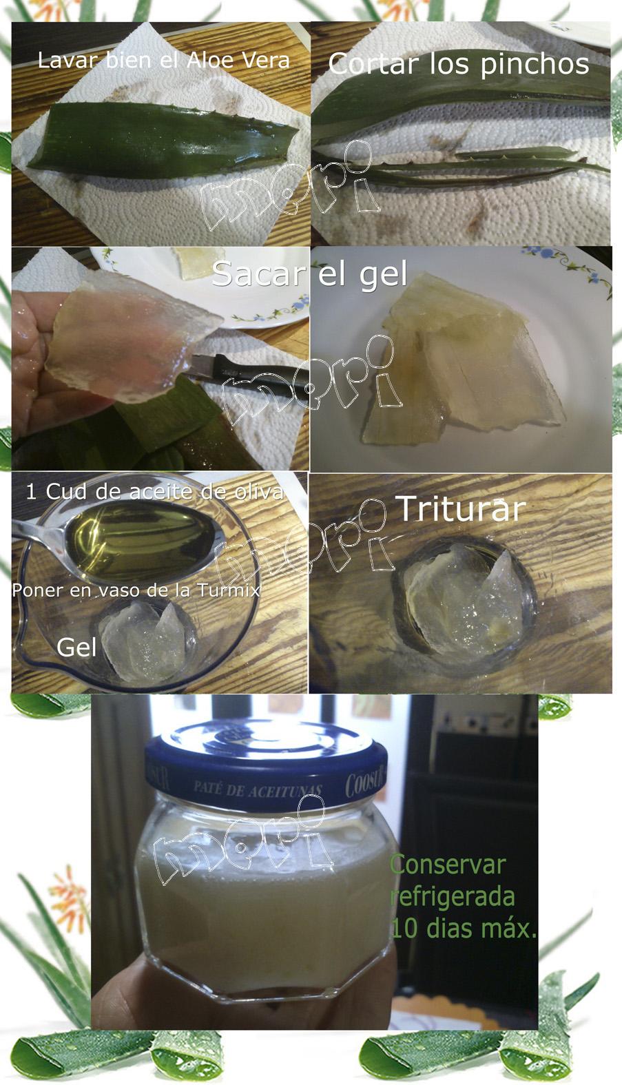 Las cositas de meri crema hidratante de aloe vera - Bollycao thermomix ...