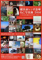 横浜赤レンガ倉庫 ねこ写真展 2016