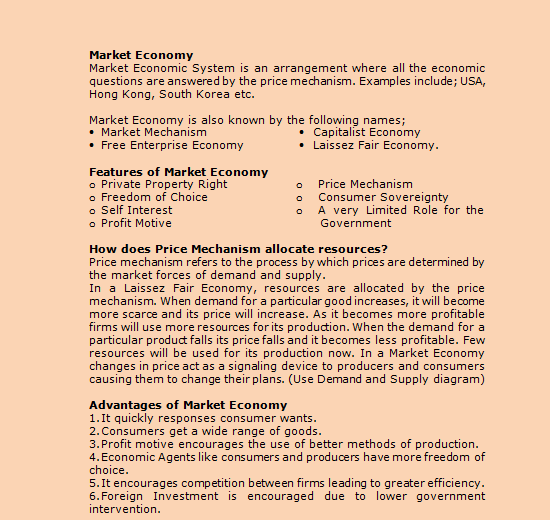 essay on planned economic system