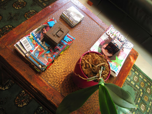 Room reveal ~ Teenager's retreat coffee table vignette