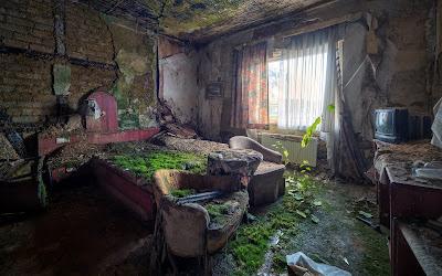 Recámara de una casa abandonada cubierta de musgo