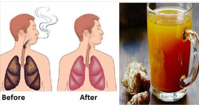 Do You Smoke For More Than 3 Years , or Recently Quit Smoking? This Miraculous Drink of Three Plants Will Clean Your Lungs!