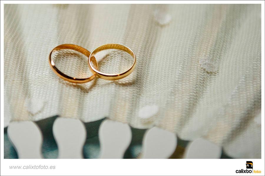 boda-ayuntamiento-de-alicante-yeguada-Lagloria-05-fotógrafo-Calixto-Foto