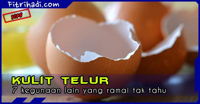 (Tips) 7 Kegunaan Lain Kulit Telur Yang Ramai Tak Tahu