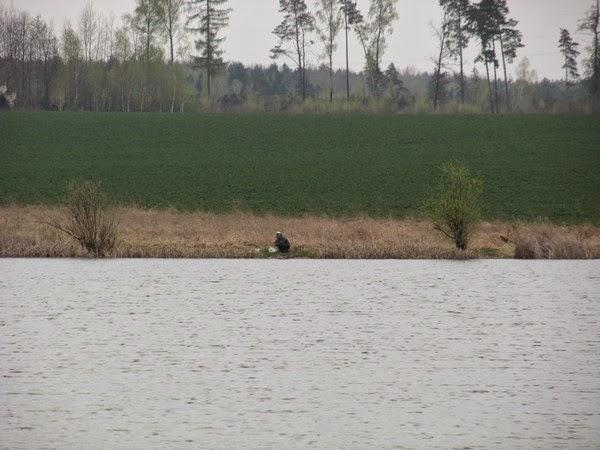 прогноз клева в новомосковске тульской области