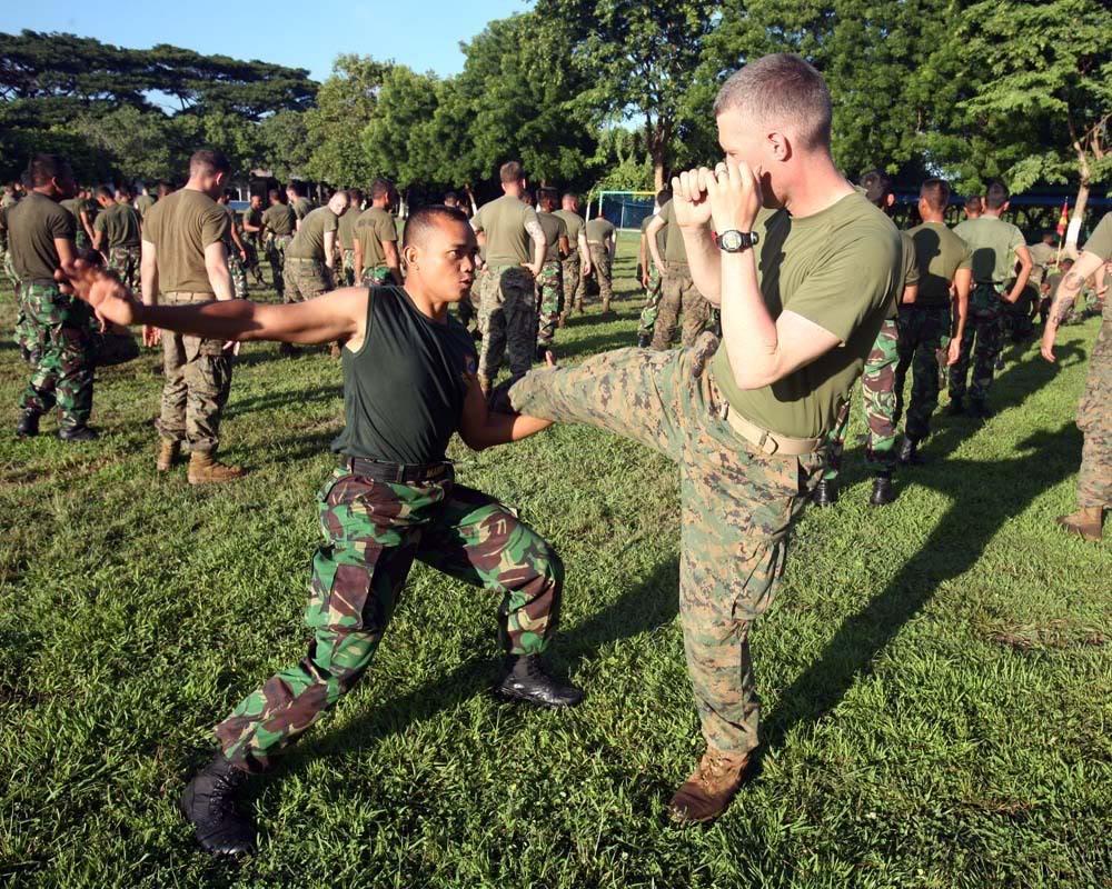 tni ad dan us army sedang melakukan latihan bela diri jakarta tni
