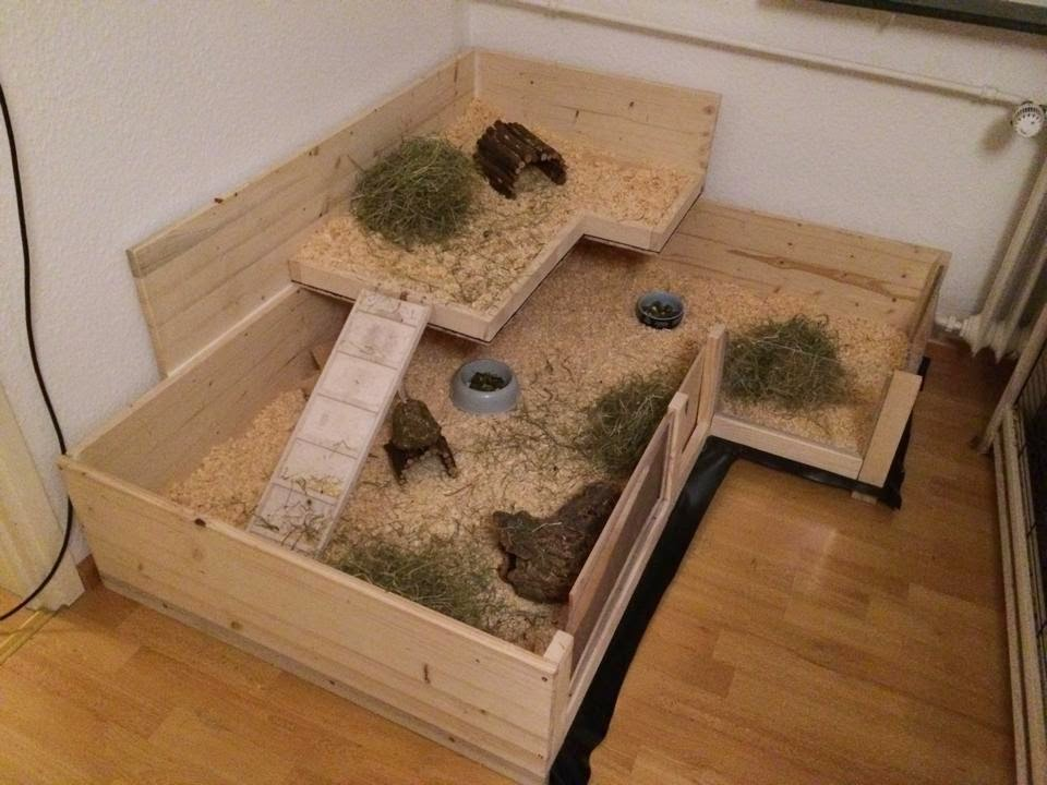 Littleadventure 39 s guinea pigs their home for Diy guinea pig hutch