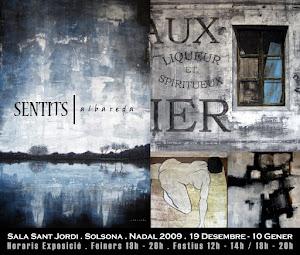 SENTITS (09-10)