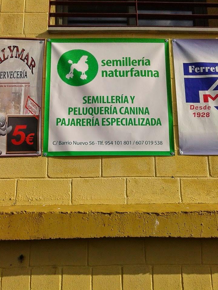 Semilleria Naturfauna