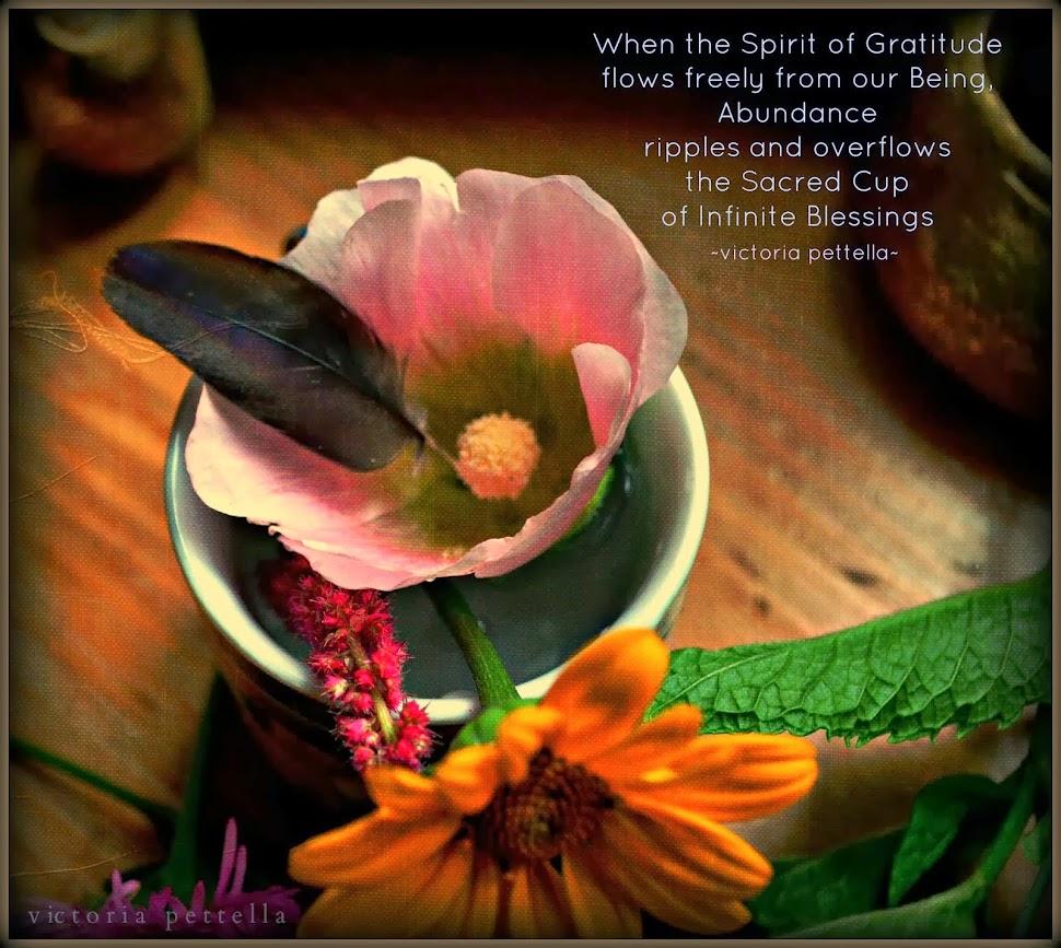 Spirit of Gratitude