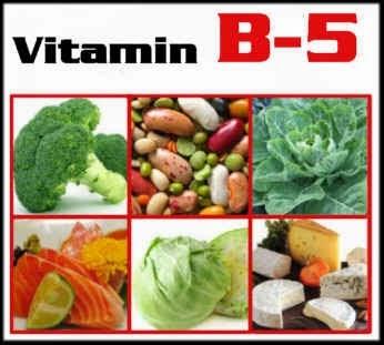 biology b1 b5