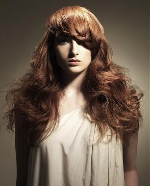 peinados+de+pelo+rizado