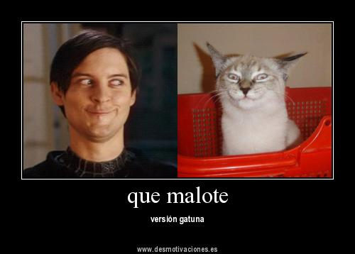View Full Size More Fotos Desmotivaciones Chistosas Messi