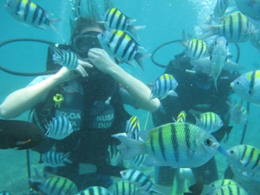 Paket Olahraga Air Terbaik Bali - Bali, Paket, Aktivitas, Liburan, Wisata, Atraksi, Watersport