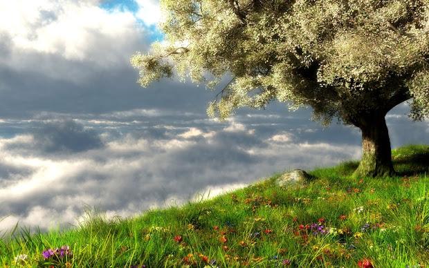 imgenes de paisajes primavera