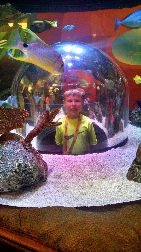Kostiuk Crew: SEA LIFE Aquarium Kansas City