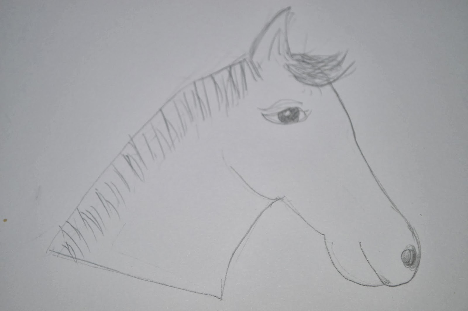 Chinese New Year Horse  Drawing Template