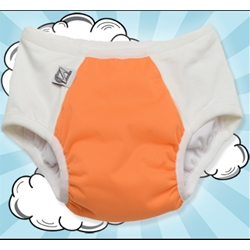 cloth potty training pants options #clothdiapers