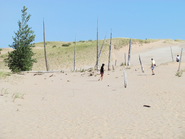 Hiking Ghost Forest, Sleeping Bear Dunes (photo by J. Schechter)