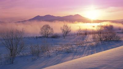 Paisaje nevado en Hokkaido, Japón durante el invierno