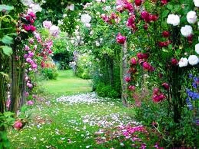 Jardim da Gloria