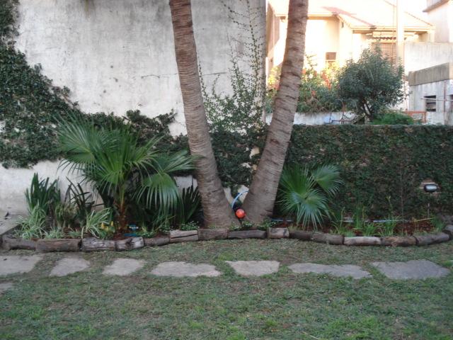 Reverdir jardineria y paisajismo jard n con palmeras for Jardin hormiguita viajera villa bosch