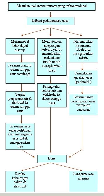Patofisiologi Gastroenteritis Adalah