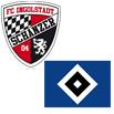 FC Ingolstadt - Hamburger SV