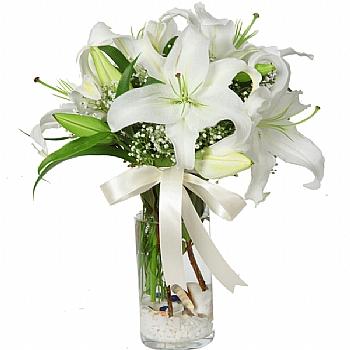 camda beyaz lilyumlar