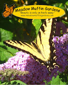 Meadow Muffin Gardens website