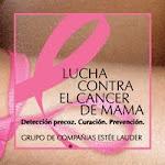 PINK CUPCAKE CON LA LUCHA CONTRA EL CANCER