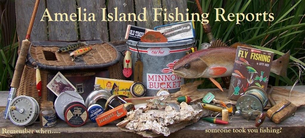 Amelia Island Fishing Reports