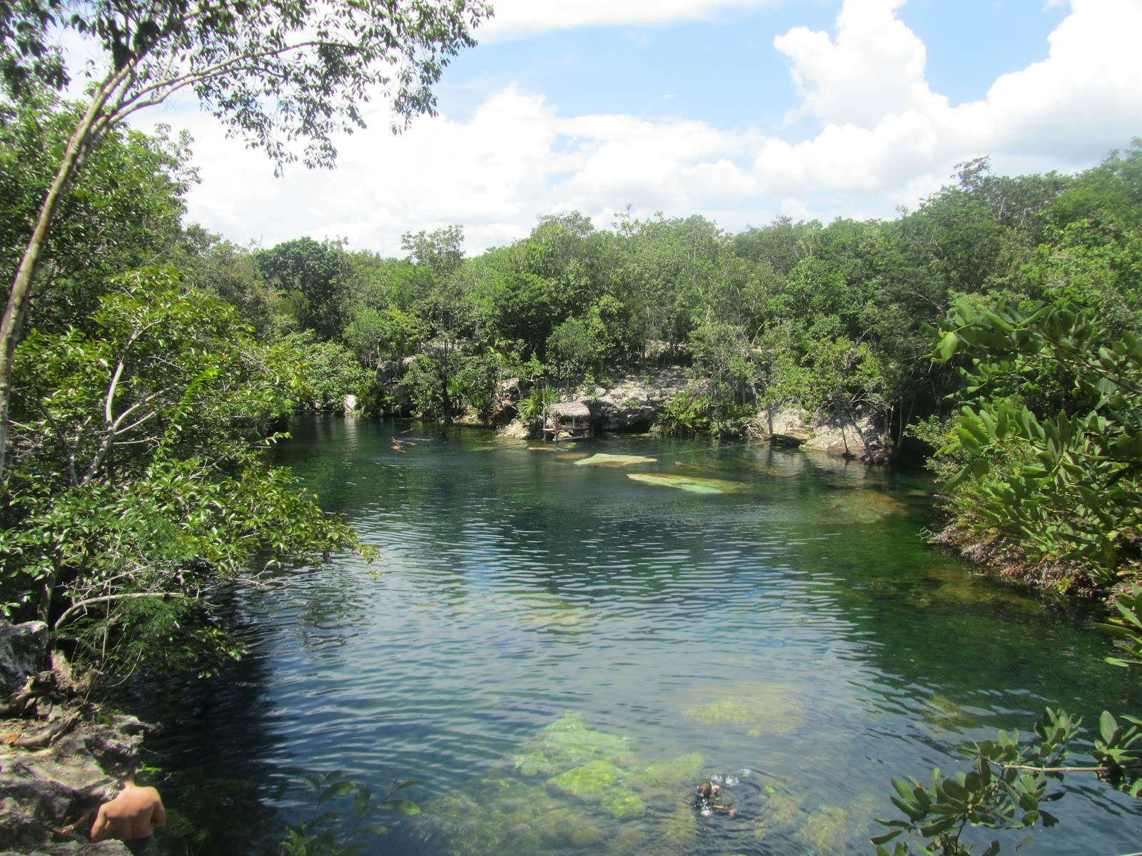 Travel with todd finding the real mexico in quintana roo for Jardin eden