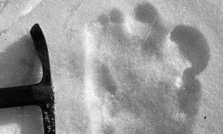 Increased Number Of Yeti Sightings In RussiaYeti Footprints