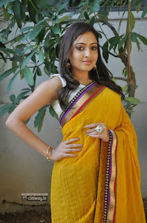 Anjana-Stills-in-Saree-at-Nenu-Naa-Friends-Opening