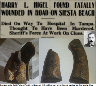 Who bludgeoned Harry Higel about the face and head on that cold Thursday evening, January 6th, 1921