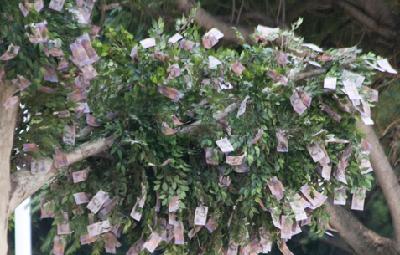 Ingin Menghasilkan Uang?