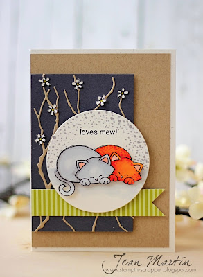 Kitty card using Newton's Antics Stamp set