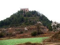 La pujada al Castell de Balsareny rodejada d'ametllers florits