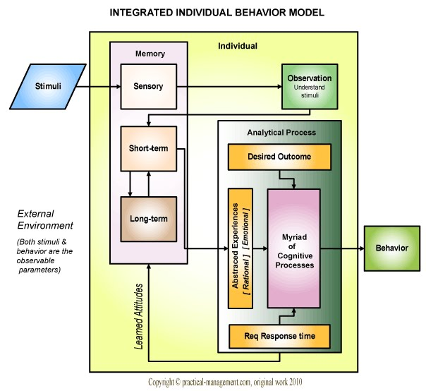 role of individual in organization The role of networks in organizational change  the number of steps required for any individual in the network to get in touch with a colleague, increase the.