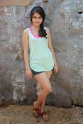 Sheena shahabadi sizzling pics-thumbnail-19