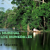 2 de febrero: Día Mundial de los Humedales